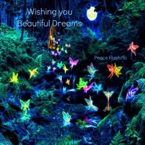 Wishing you beautiful dreams....